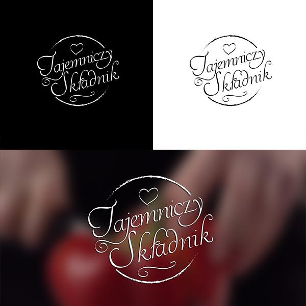tajemniczy skladnik logo concept 2